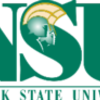 Thumb 200px norfolk state university logo