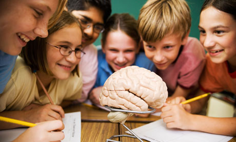kids guide to the brain presented masters in psychology guide